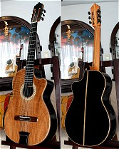 Macassar Ebony B&S, Curly Sinker Redwood top