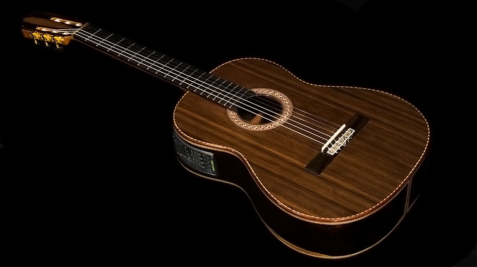 Opinion Macassar ebony guitar