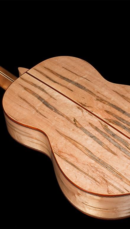 Mangore bellucci guitars ambrosia maple b s cedar top