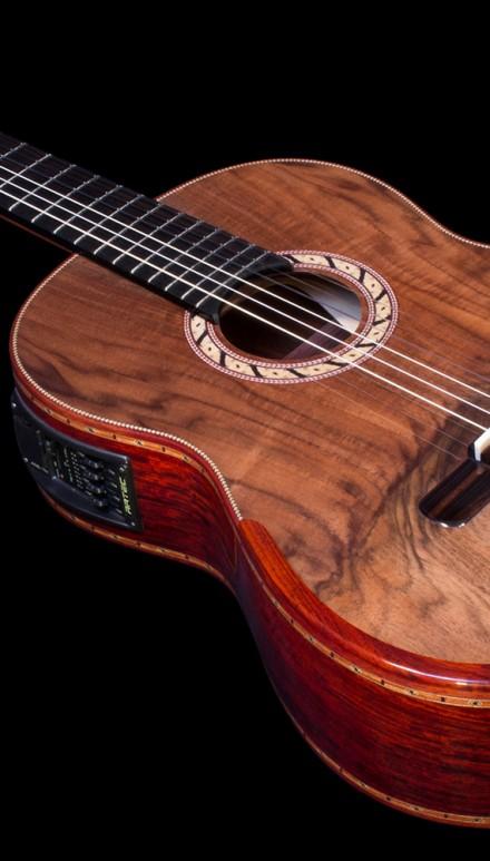 Mangore Bellucci Guitars Cocobolo B Amp S Franquette