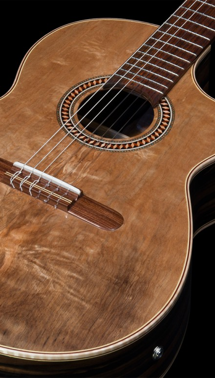 Macassar ebony guitar Exaggerate