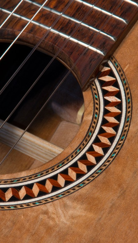 Phrase... super, Macassar ebony guitar amusing idea