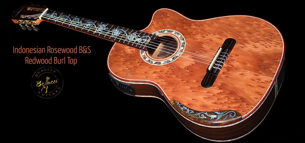 Mangore Bellucci Guitars Indonesian Rosewood B Amp S