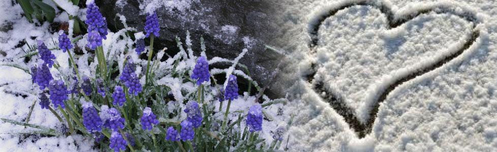 l'ultima neve di primavera spartito pdf