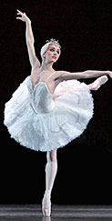 Swan Lake, Peter Tchaikovsky