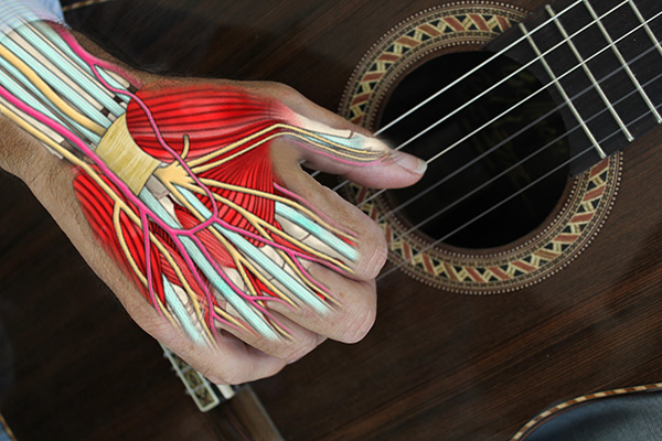 The Player's hand