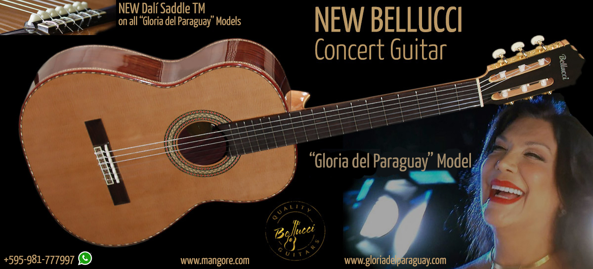 """Gloria del Paraguay"" Guitar Model Concert Classical Guitar"