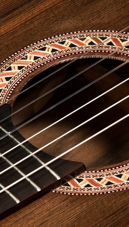 Macassar Ebony B&S, Sinker Redwood top1 Concert Classical Guitar