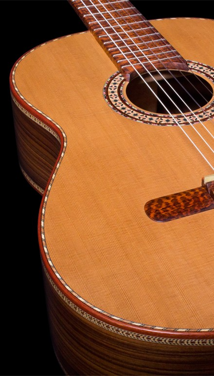 The Tiger, Pau Ferro B&S, Cedar top Concert Classical Guitar