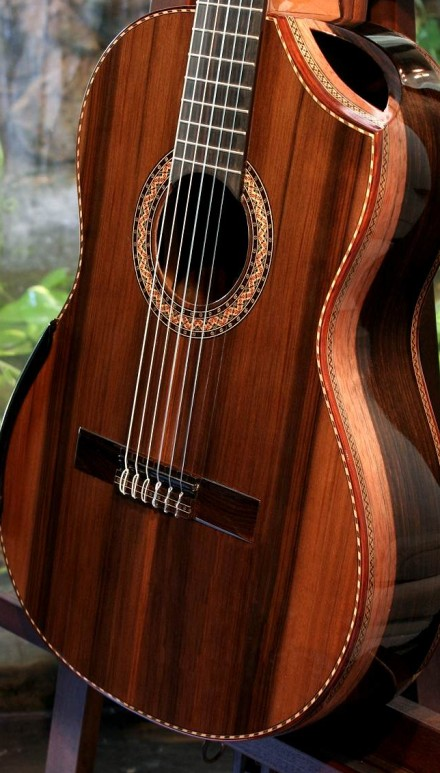 Macassar Ebony B&S, Sinker Redwood top Concert Classical Guitar