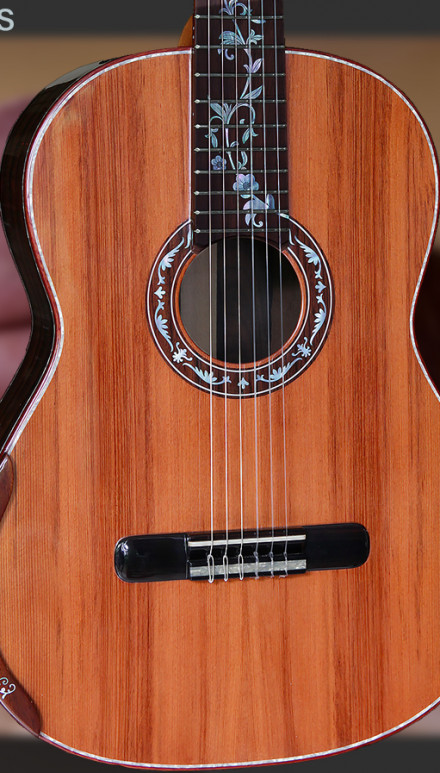 Ziricote B&S, Sinker Redwood Top Concert Classical Guitar