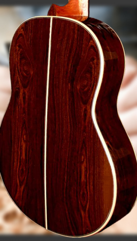 Cocobolo B&S, German Spruce Top, Doubletop Concert Classical Guitar