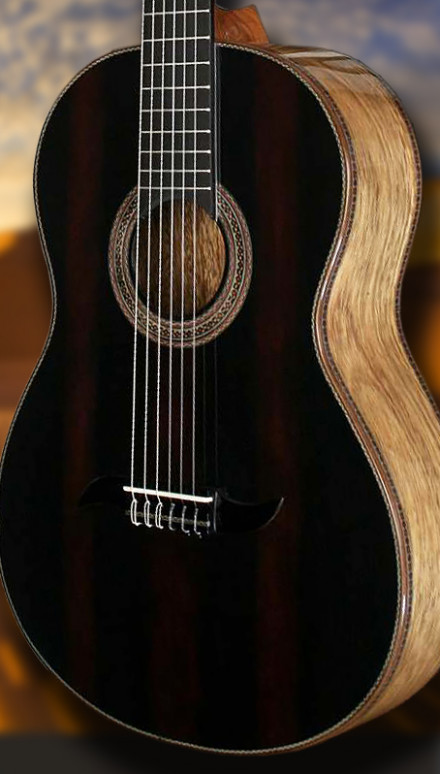 Coyote B&S Sinker Redwood top Concert Classical Guitar