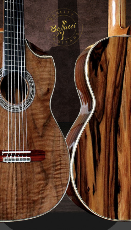 The Tiger, Brazilian Rosewood B&S, Curly Sinker Redwood top Concert Classical Guitar