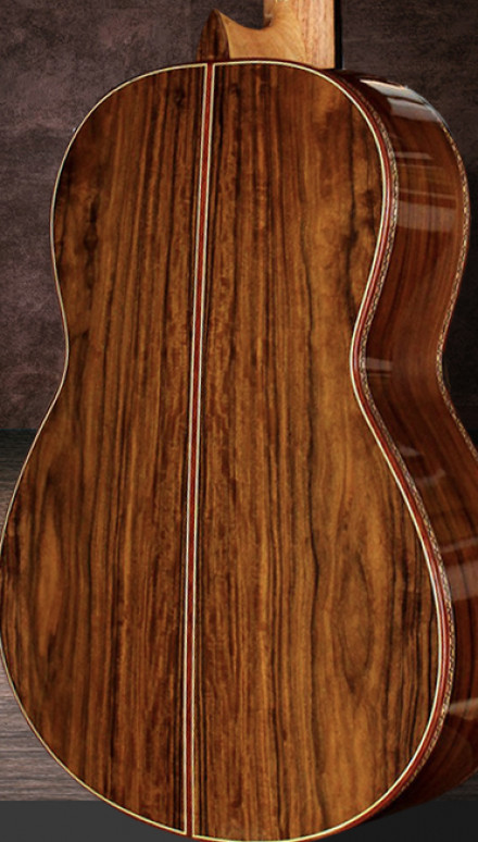 Pau Ferro B&S, Franquette Walnut Top Concert Classical Guitar