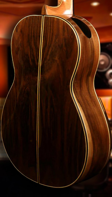 Pau Ferro Back & Sides, Sinker Redwood Top Doubletop Concert Classical Guitar