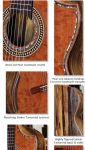 Spalted Tamarind B&S Spalted Redwood Top Concert Classical Guitar