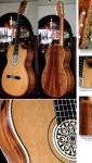 Palo Escrito B&S Cedar Top Lattice Braced Concert Classical Guitar