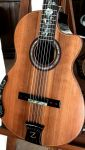 The Zorro, Blackwood B&S, Sinker Redwood Top Concert Classical Guitar