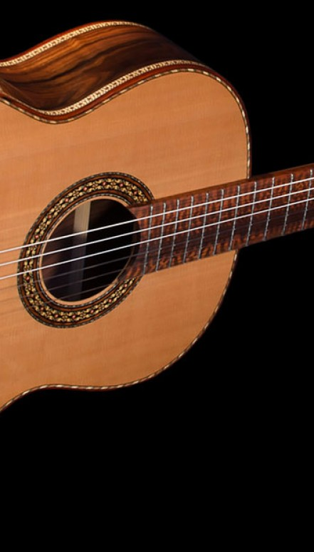 Pau Ferro B&S, Cedar top, The Tiger Concert Classical Guitar