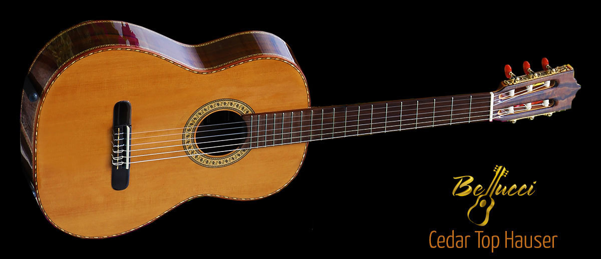Indonesian Rosewood B&S Cedar Top Beauty Concert Classical Guitar