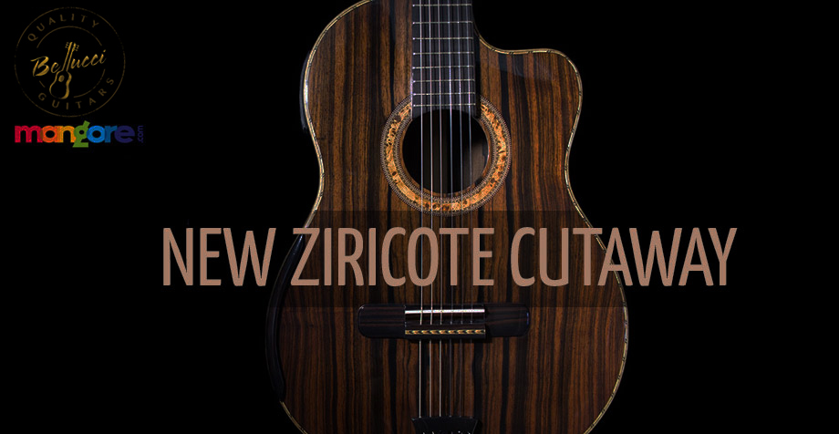 New Ziricote Cutaway, Perfect Concert Guitar !
