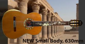 NEW Small Body 630mm FREE SHIPPING!!